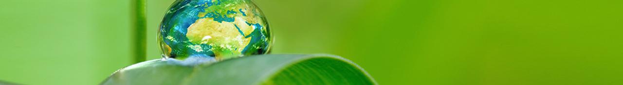 Impression et développement durable